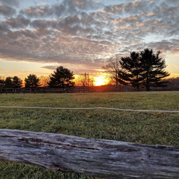 7 Reasons_Header Image_KR
